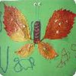 Un joli papillon d