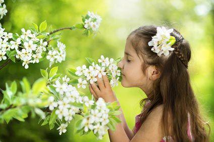 Protéger bébé des intoxications par plantes @